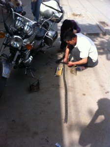 Getting a New Chain on the Jiancheng